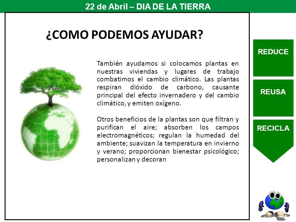 REDUCE REUSA RECICLA 22 de Abril – DIA DE LA TIERRA ¿COMO PODEMOS AYUDAR? También ayudamos si colocamos plantas en nuestras viviendas y lugares de tra