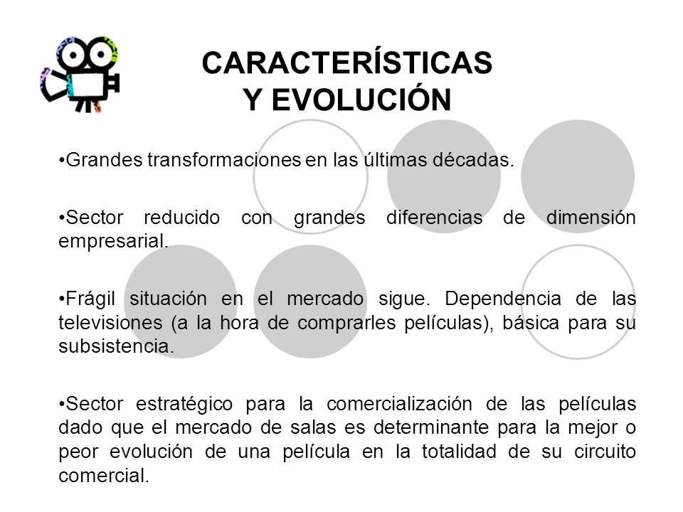 CARACTERÍSTICAS Y EVOLUCIÓN Grandes transformaciones en las últimas décadas. Sector reducido con grandes diferencias de dimensión empresarial. Frágil