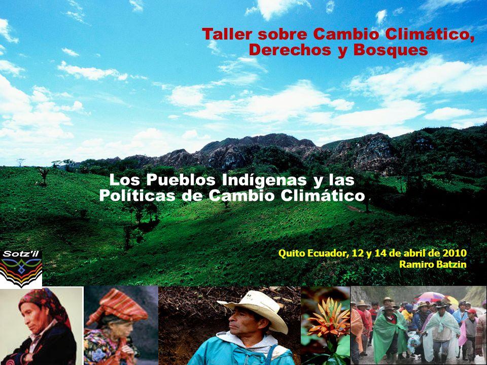 Los Pueblos Indígenas y las Políticas de Cambio Climático Quito Ecuador, 12 y 14 de abril de 2010 Ramiro Batzin Taller sobre Cambio Climático, Derecho