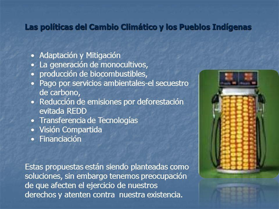Adaptación y Mitigación La generación de monocultivos, producción de biocombustibles, Pago por servicios ambientales-el secuestro de carbono, Reducció