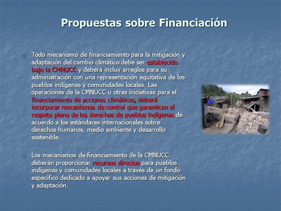 Propuestas sobre Financiación Todo mecanismo de financiamiento para la mitigación y adaptación del cambio climático debe ser establecido bajo la CMNUC