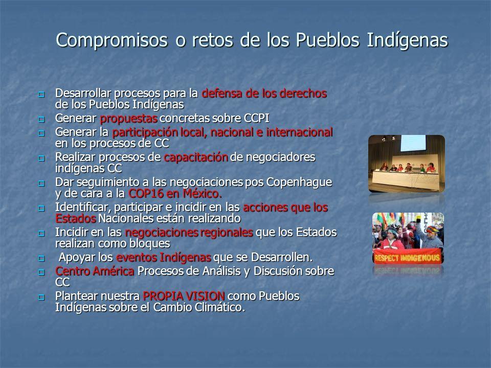 Compromisos o retos de los Pueblos Indígenas Desarrollar procesos para la defensa de los derechos de los Pueblos Indígenas Desarrollar procesos para l