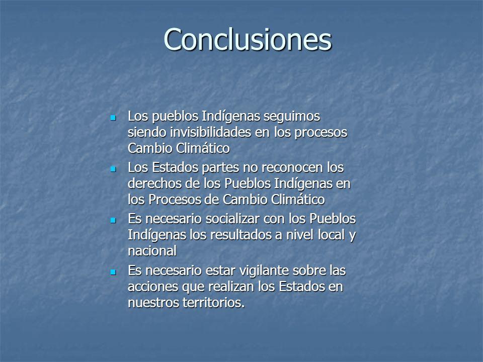 Conclusiones Los pueblos Indígenas seguimos siendo invisibilidades en los procesos Cambio Climático Los pueblos Indígenas seguimos siendo invisibilida
