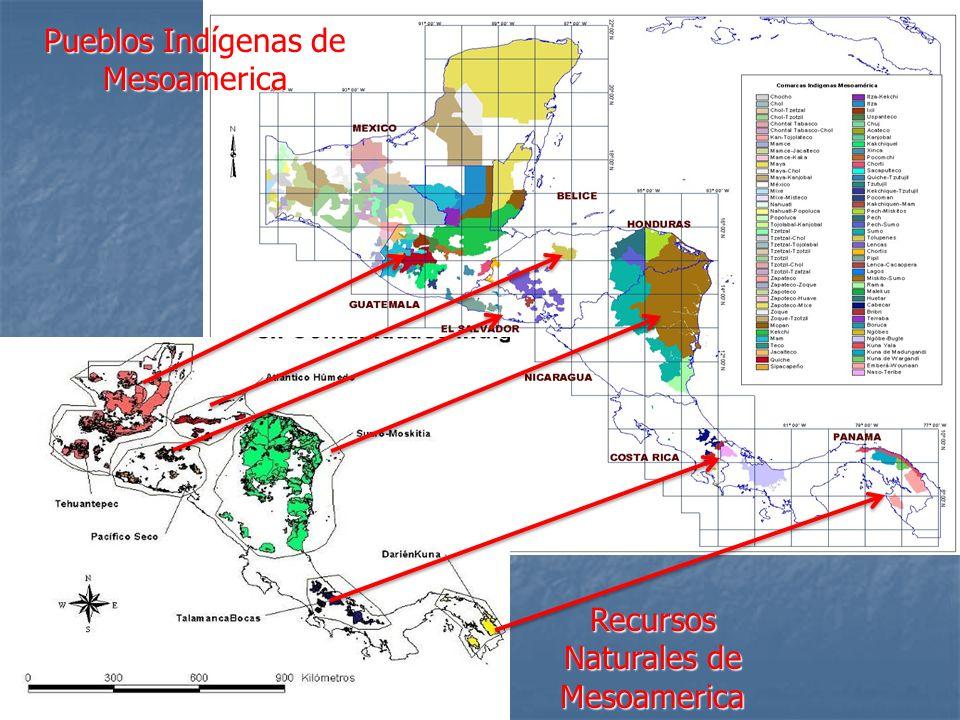 Contexto de los Pueblos Indígenas: Los pueblos indígenas habitamos los ecosistemas: bosques húmedos tropicales, desiertos, páramos, montañas e islas, entre otros.