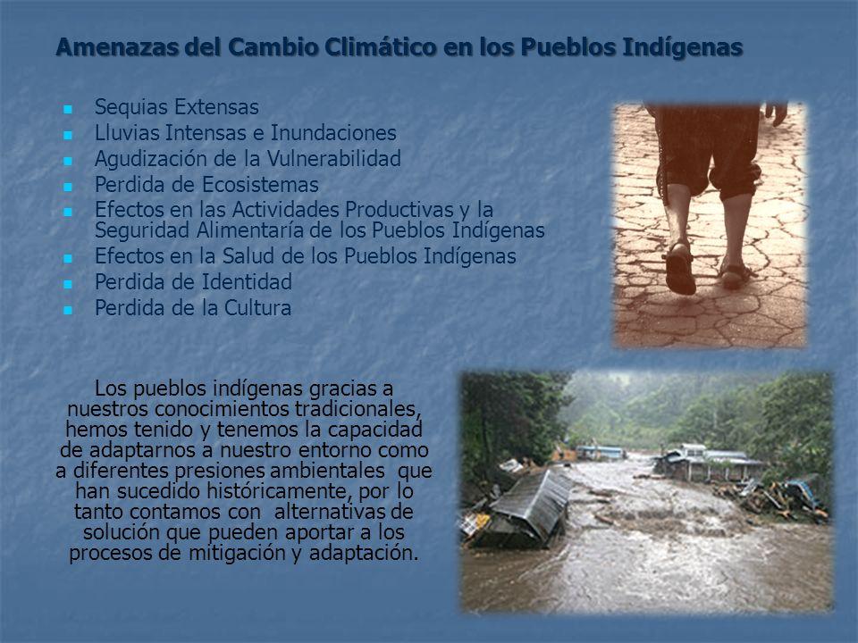 Sequias Extensas Lluvias Intensas e Inundaciones Agudización de la Vulnerabilidad Perdida de Ecosistemas Efectos en las Actividades Productivas y la S