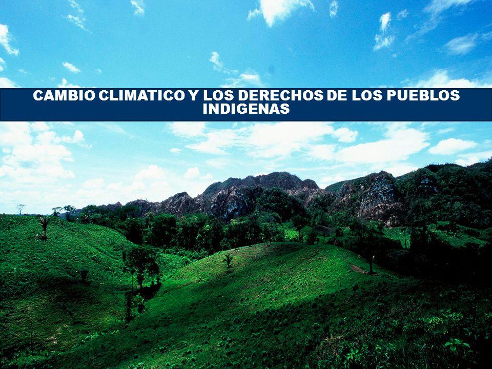 Pueblos Indígenas de Mesoamerica CAMBIO CLIMATICO Y LOS DERECHOS DE LOS PUEBLOS INDIGENAS