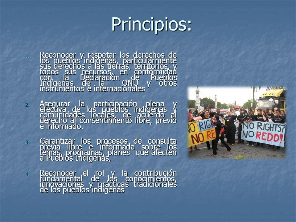 Principios: 1. Reconocer y respetar los derechos de los pueblos indígenas, particularmente sus derechos a las tierras, territorios, y todos sus recurs
