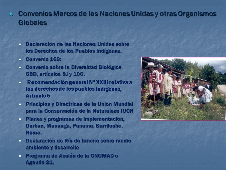 Pueblos Indígenas de Mesoamerica LOS PUEBLOS INDIGENAS Y LAS POLITICAS SOBRE CAMBIO CLIMATICO