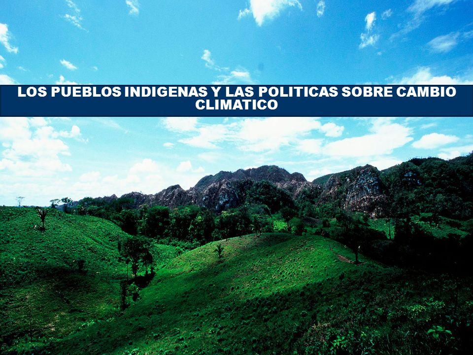 Párrafo tomado en cuenta Orientación metodológica para las actividades relativas a la reducción de emisiones por deforestación y degradación de los bosques y el papel de la conservación, la gestión sostenible de los bosques y aumento de las reservas forestales de carbono en los países en desarrollo Reconociendo la necesidad de una participación plena y efectiva de los pueblos indígenas y comunidades locales en, y la contribución potencial de sus conocimientos, el seguimiento y la notificación de las actividades relativas a la decisión 1/CP.13, apartado 1 (b) (iii) Reconociendo la necesidad de una participación plena y efectiva de los pueblos indígenas y comunidades locales en, y la contribución potencial de sus conocimientos, el seguimiento y la notificación de las actividades relativas a la decisión 1/CP.13, apartado 1 (b) (iii) Alienta, según proceda, la elaboración de orientaciones para la participación efectiva de los pueblos indígenas y comunidades locales en la vigilancia y presentación de informes; Alienta, según proceda, la elaboración de orientaciones para la participación efectiva de los pueblos indígenas y comunidades locales en la vigilancia y presentación de informes;