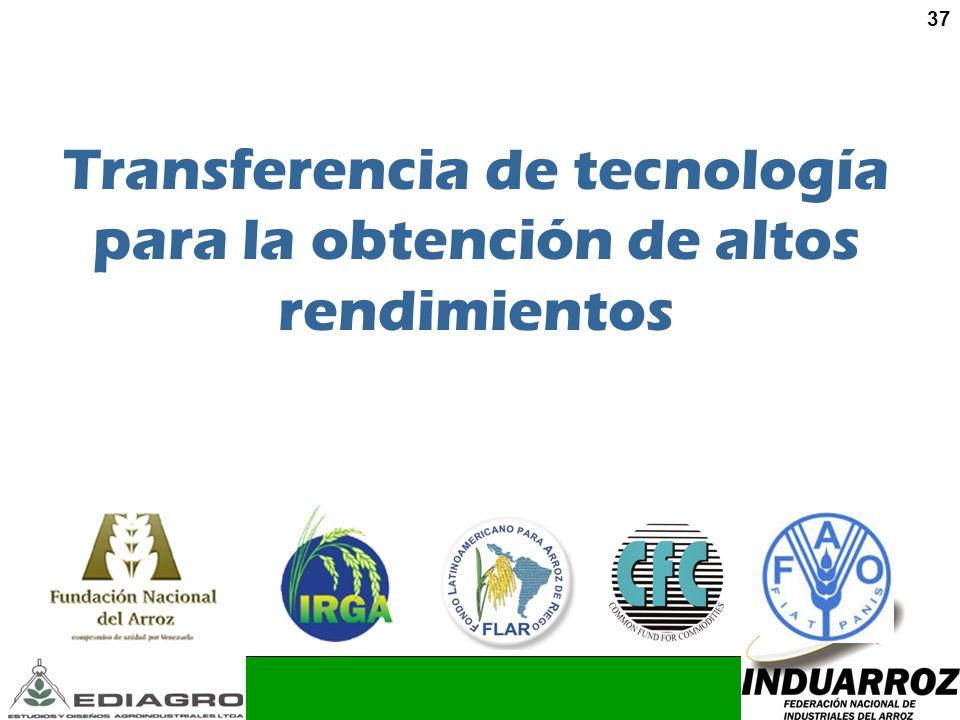 37 Transferencia de tecnología para la obtención de altos rendimientos