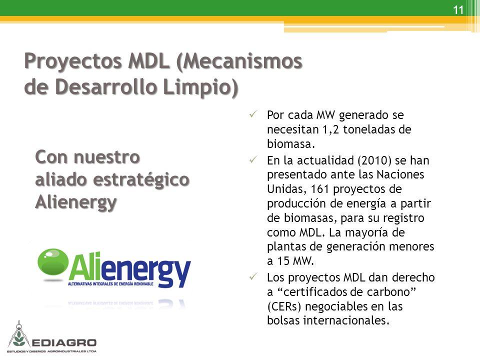 11 Proyectos MDL (Mecanismos de Desarrollo Limpio) Con nuestro aliado estratégico Alienergy Por cada MW generado se necesitan 1,2 toneladas de biomasa
