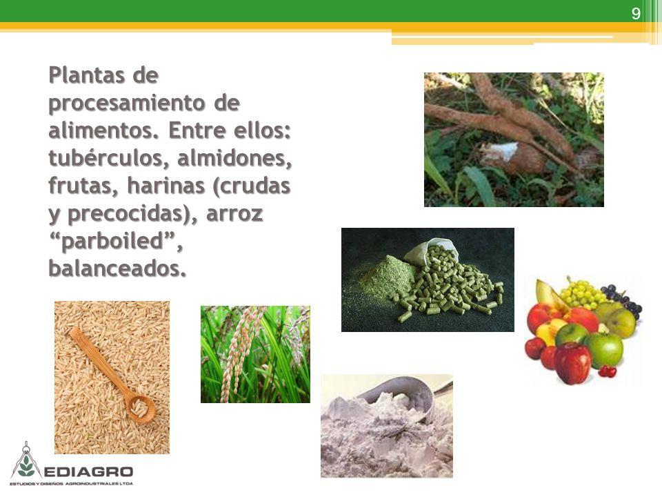 9 Plantas de procesamiento de alimentos. Entre ellos: tubérculos, almidones, frutas, harinas (crudas y precocidas), arroz parboiled, balanceados.