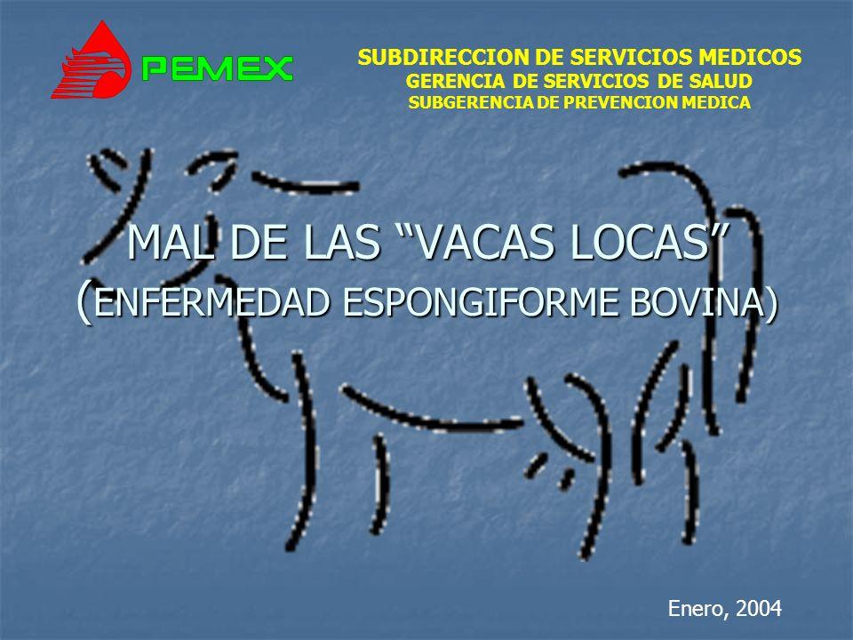 SUBDIRECCION DE SERVICIOS MEDICOS GERENCIA DE SERVICIOS DE SALUD SUBGERENCIA DE PREVENCION MEDICA MAL DE LAS VACAS LOCAS ( ENFERMEDAD ESPONGIFORME BOVINA) Enero, 2004