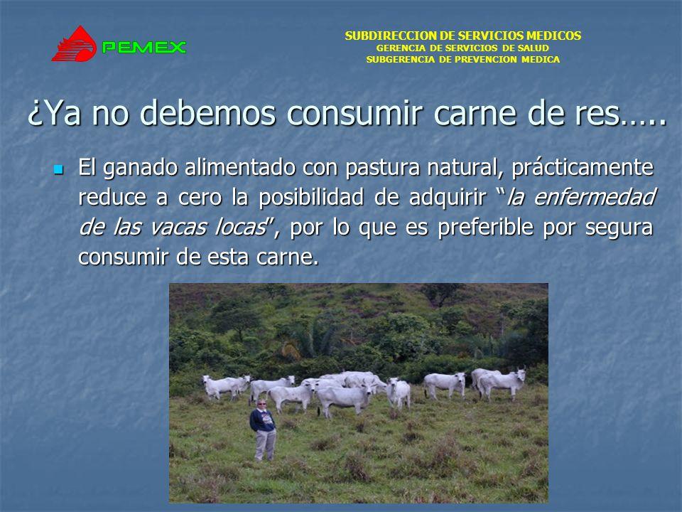 SUBDIRECCION DE SERVICIOS MEDICOS GERENCIA DE SERVICIOS DE SALUD SUBGERENCIA DE PREVENCION MEDICA ¿Ya no debemos consumir carne de res….. El ganado al