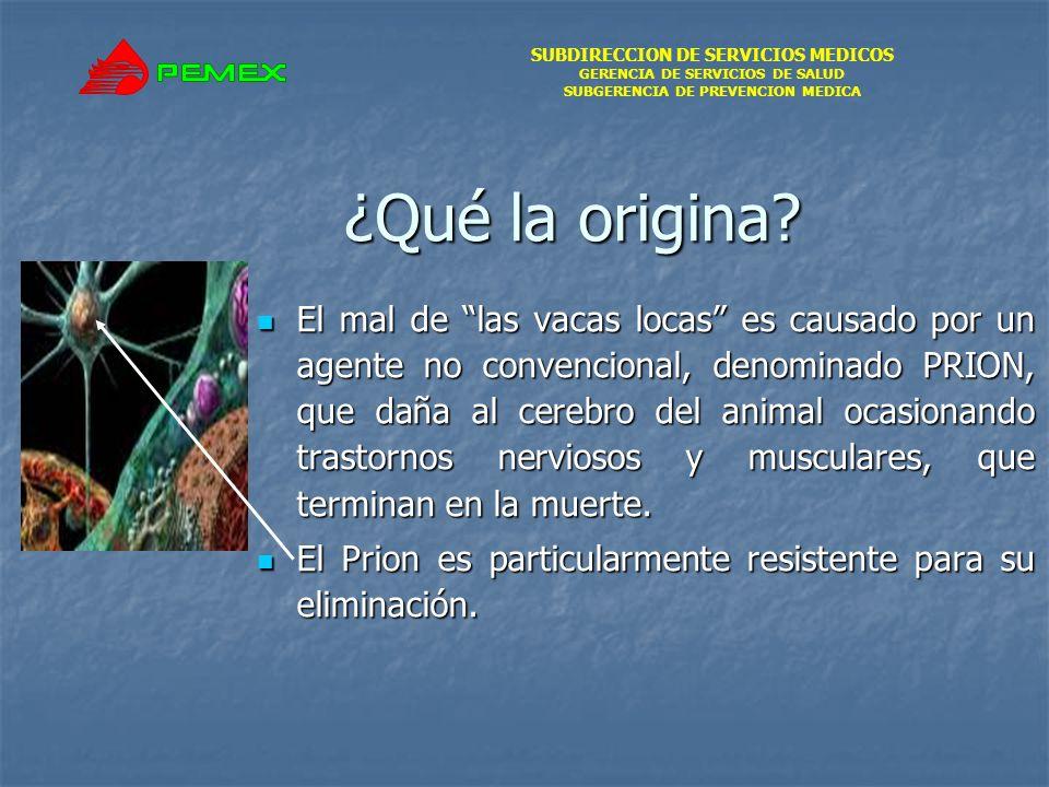 SUBDIRECCION DE SERVICIOS MEDICOS GERENCIA DE SERVICIOS DE SALUD SUBGERENCIA DE PREVENCION MEDICA ¿Qué la origina.