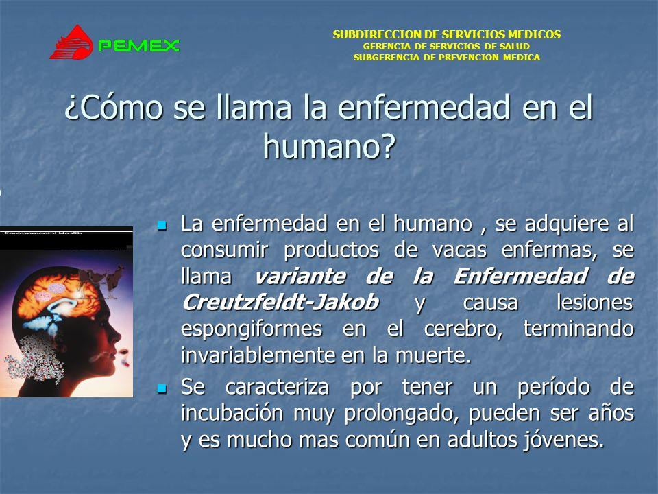 SUBDIRECCION DE SERVICIOS MEDICOS GERENCIA DE SERVICIOS DE SALUD SUBGERENCIA DE PREVENCION MEDICA ¿Cómo se llama la enfermedad en el humano.