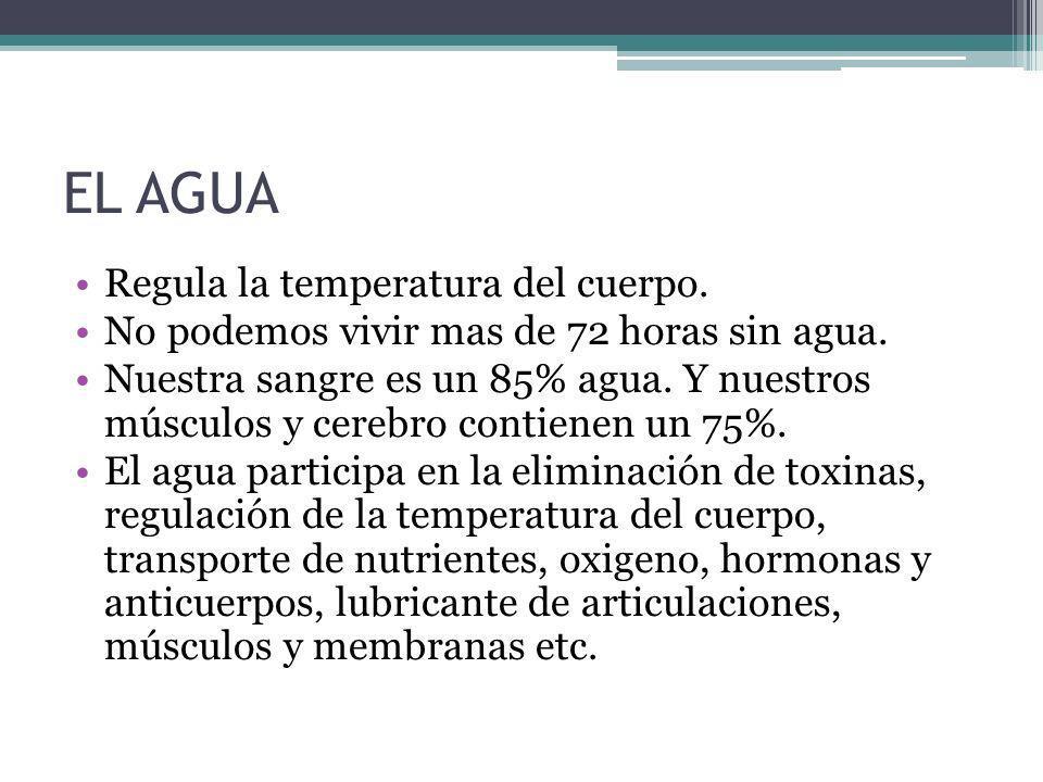 EL AGUA Regula la temperatura del cuerpo. No podemos vivir mas de 72 horas sin agua. Nuestra sangre es un 85% agua. Y nuestros músculos y cerebro cont