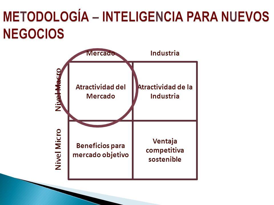 Atractividad del Mercado Ventaja competitiva sostenible Atractividad de la Industria Beneficios para mercado objetivo Nivel Micro MercadoIndustria Nivel Macro