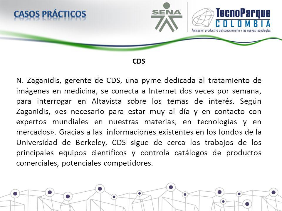 CDS N. Zaganidis, gerente de CDS, una pyme dedicada al tratamiento de imágenes en medicina, se conecta a Internet dos veces por semana, para interroga