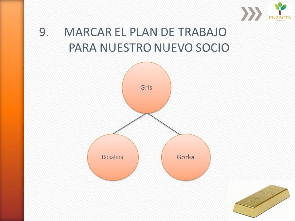 9. MARCAR EL PLAN DE TRABAJO PARA NUESTRO NUEVO SOCIO Gris Rosalina Gorka