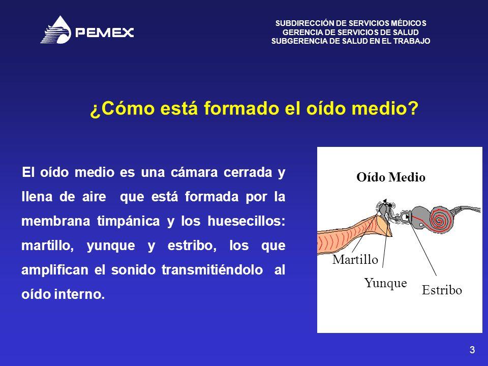 SUBDIRECCIÓN DE SERVICIOS MÉDICOS GERENCIA DE SERVICIOS DE SALUD SUBGERENCIA DE SALUD EN EL TRABAJO 4 ¿Cómo está formado el Oído interno.