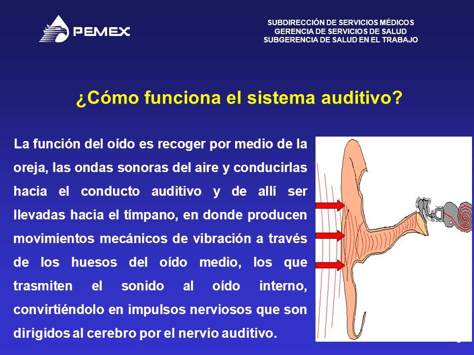 SUBDIRECCIÓN DE SERVICIOS MÉDICOS GERENCIA DE SERVICIOS DE SALUD SUBGERENCIA DE SALUD EN EL TRABAJO 5 ¿Cómo funciona el sistema auditivo? La función d