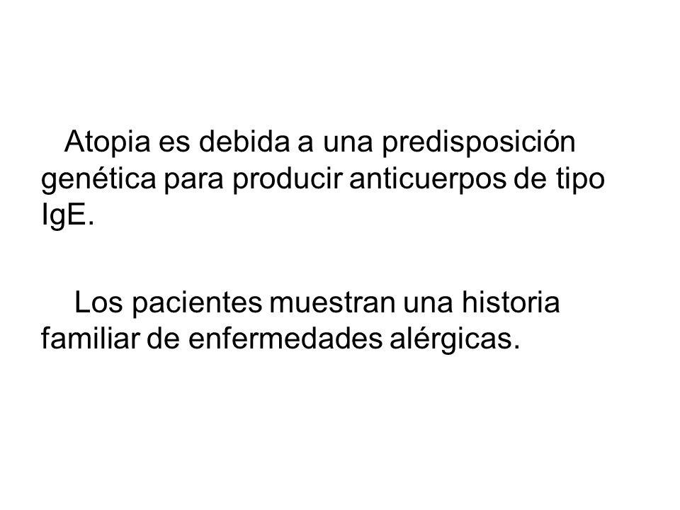 Atopia es debida a una predisposición genética para producir anticuerpos de tipo IgE.