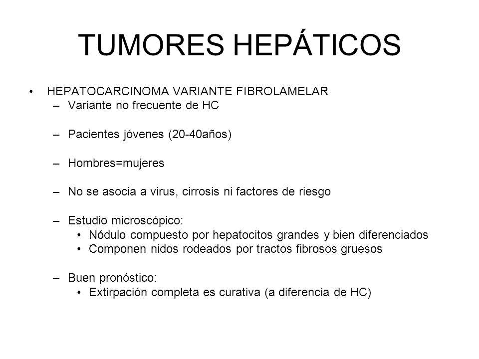 TUMORES HEPÁTICOS HEPATOCARCINOMA VARIANTE FIBROLAMELAR –Variante no frecuente de HC –Pacientes jóvenes (20-40años) –Hombres=mujeres –No se asocia a v