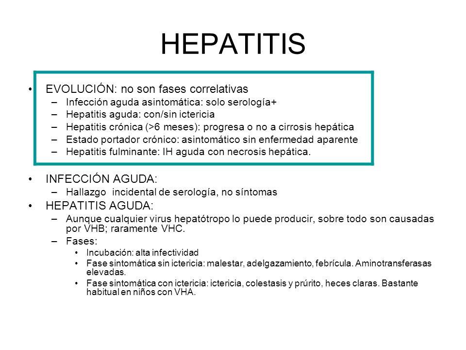 HEPATITIS EVOLUCIÓN: no son fases correlativas –Infección aguda asintomática: solo serología+ –Hepatitis aguda: con/sin ictericia –Hepatitis crónica (