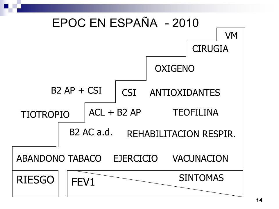 14 EPOC EN ESPAÑA - 2010 RIESGO FEV1 SINTOMAS ABANDONO TABACOEJERCICIOVACUNACION B2 AC a.d. REHABILITACION RESPIR. ACL +B2 APTEOFILINA TIOTROPIO CSIAN
