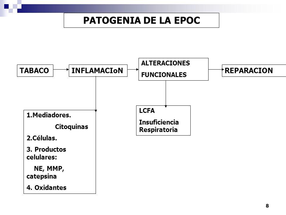 8 PATOGENIA DE LA EPOC TABACOINFLAMACIoN ALTERACIONES FUNCIONALES REPARACION 1.Mediadores. Citoquinas 2.Células. 3. Productos celulares: NE, MMP, cate