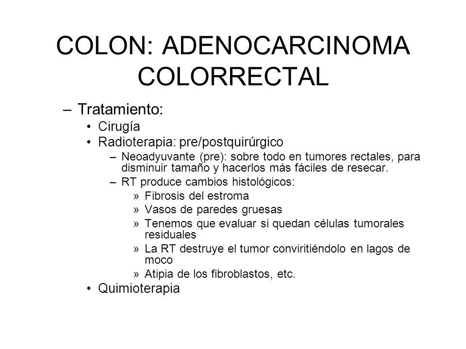 COLON: ADENOCARCINOMA COLORRECTAL –Tratamiento: Cirugía Radioterapia: pre/postquirúrgico –Neoadyuvante (pre): sobre todo en tumores rectales, para dis
