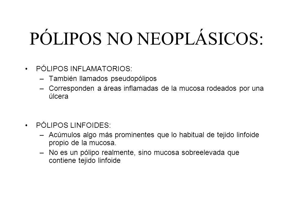 PÓLIPOS NO NEOPLÁSICOS: PÓLIPOS INFLAMATORIOS: –También llamados pseudopólipos –Corresponden a áreas inflamadas de la mucosa rodeados por una úlcera P