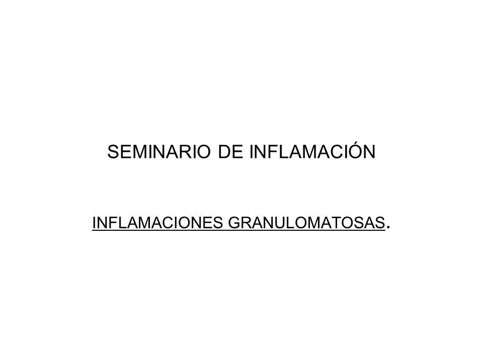 SEMINARIO DE INFLAMACIÓN INFLAMACIONES GRANULOMATOSAS.