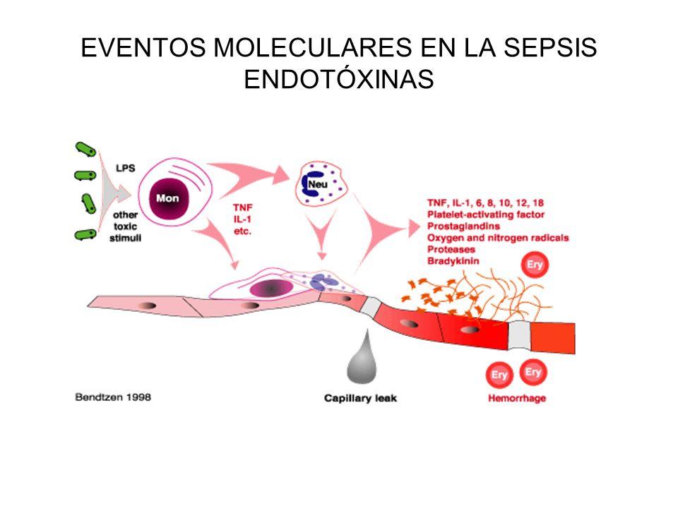 EVENTOS MOLECULARES EN LA SEPSIS ENDOTÓXINAS
