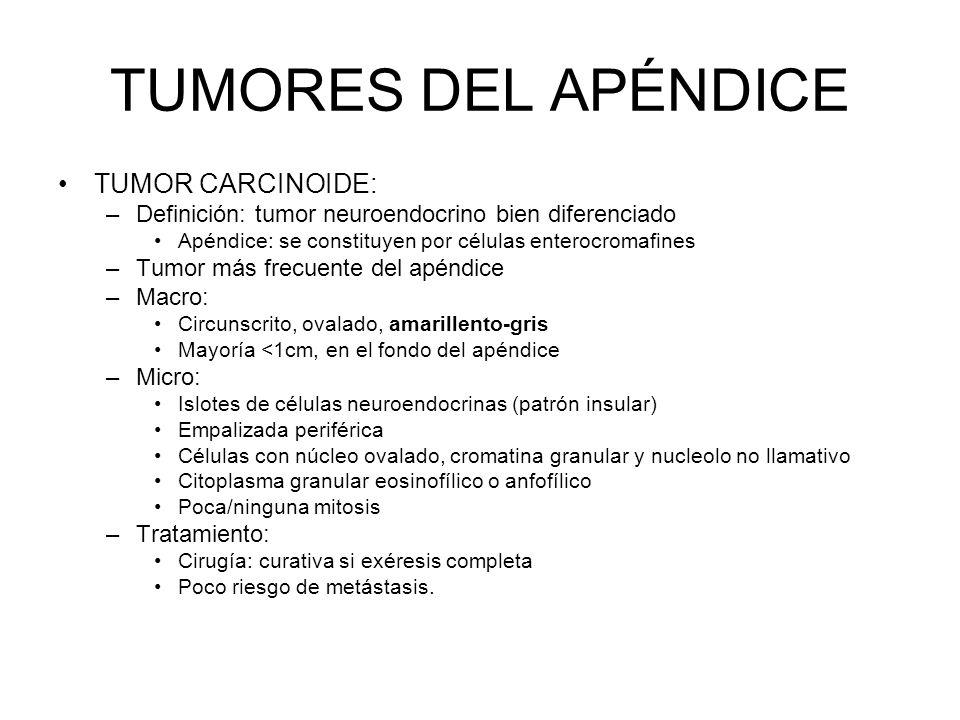 TUMORES DEL APÉNDICE TUMOR CARCINOIDE: –Definición: tumor neuroendocrino bien diferenciado Apéndice: se constituyen por células enterocromafines –Tumo