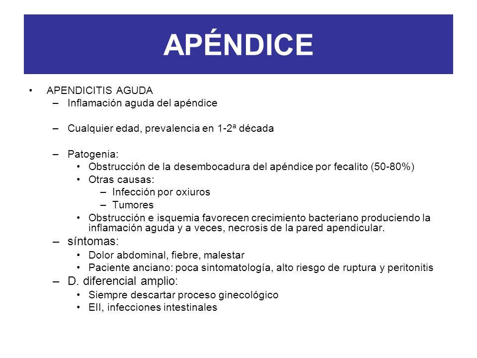 APÉNDICE APENDICITIS AGUDA –Inflamación aguda del apéndice –Cualquier edad, prevalencia en 1-2ª década –Patogenia: Obstrucción de la desembocadura del