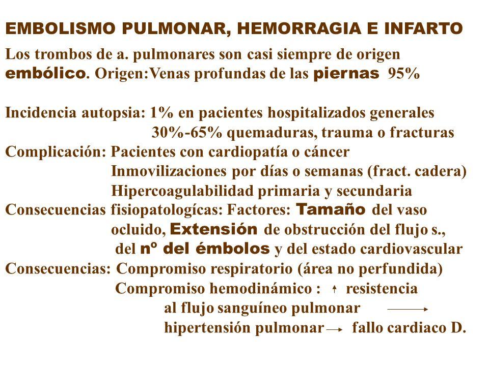EMBOLISMO PULMONAR, HEMORRAGIA E INFARTO Los trombos de a. pulmonares son casi siempre de origen embólico. Origen:Venas profundas de las piernas 95% I