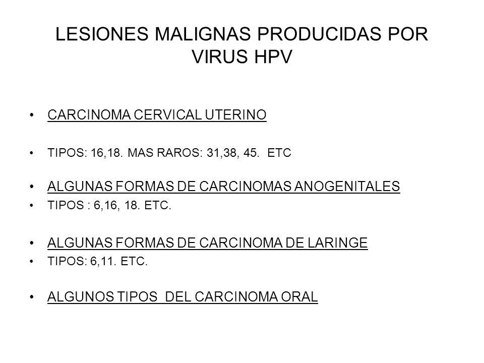LESIONES MALIGNAS PRODUCIDAS POR VIRUS HPV CARCINOMA CERVICAL UTERINO TIPOS: 16,18. MAS RAROS: 31,38, 45. ETC ALGUNAS FORMAS DE CARCINOMAS ANOGENITALE