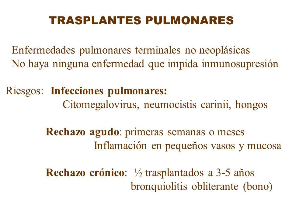 TRASPLANTES PULMONARES Enfermedades pulmonares terminales no neoplásicas No haya ninguna enfermedad que impida inmunosupresión Riesgos: Infecciones pu