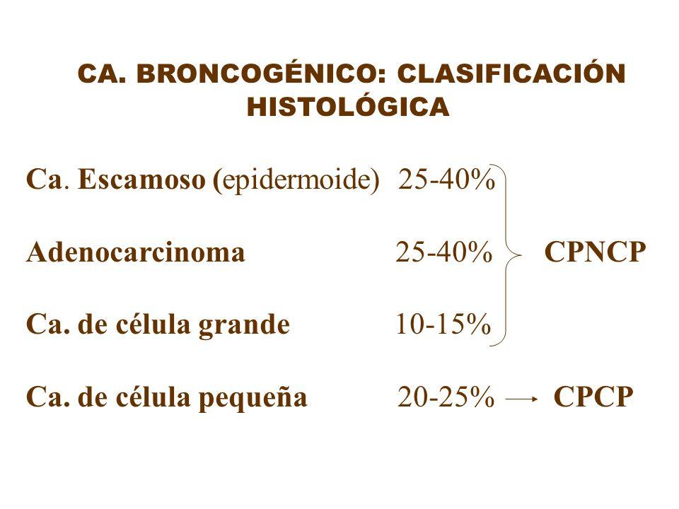 CA. BRONCOGÉNICO: CLASIFICACIÓN HISTOLÓGICA Ca. Escamoso (epidermoide) 25-40% Adenocarcinoma 25-40% CPNCP Ca. de célula grande 10-15% Ca. de célula pe