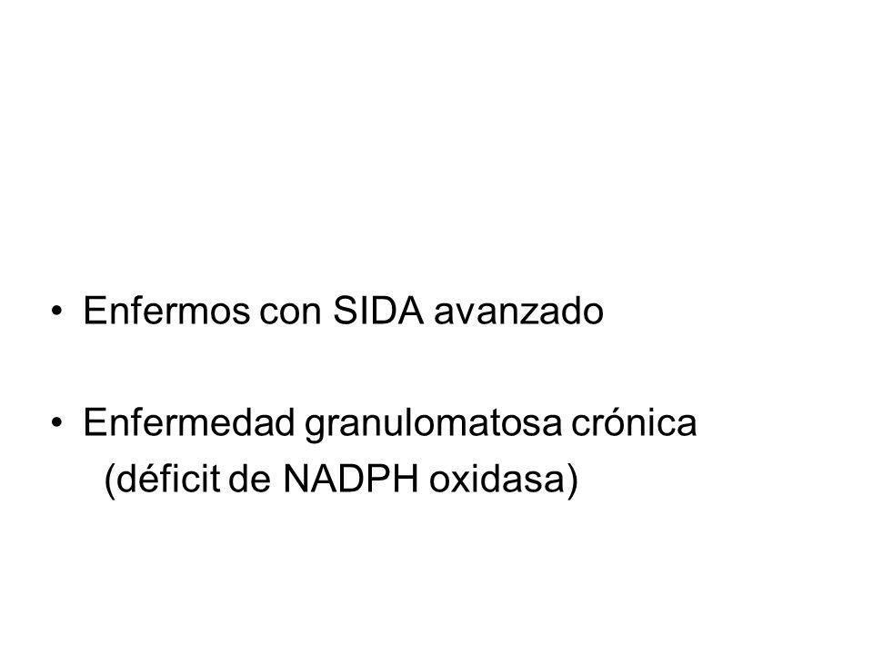 Enfermos con SIDA avanzado Enfermedad granulomatosa crónica (déficit de NADPH oxidasa)