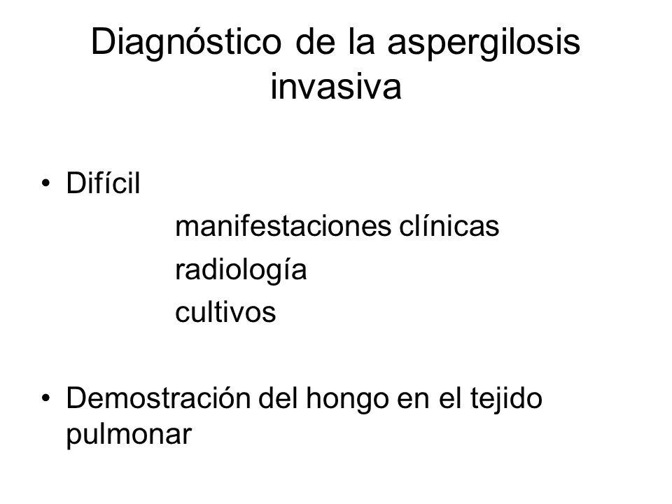Diagnóstico de la aspergilosis invasiva Difícil manifestaciones clínicas radiología cultivos Demostración del hongo en el tejido pulmonar