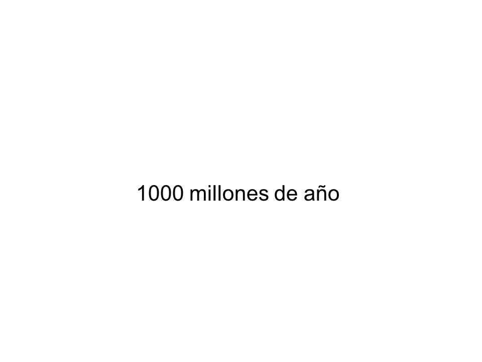 1000 millones de año