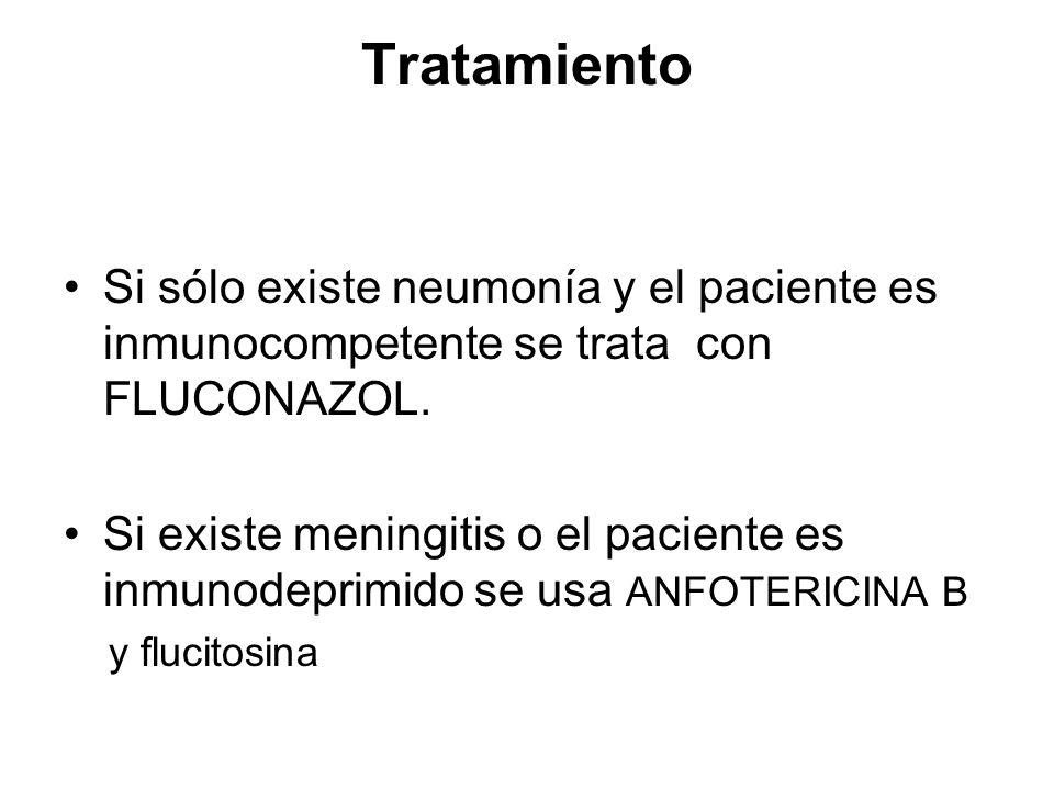 Tratamiento Si sólo existe neumonía y el paciente es inmunocompetente se trata con FLUCONAZOL. Si existe meningitis o el paciente es inmunodeprimido s