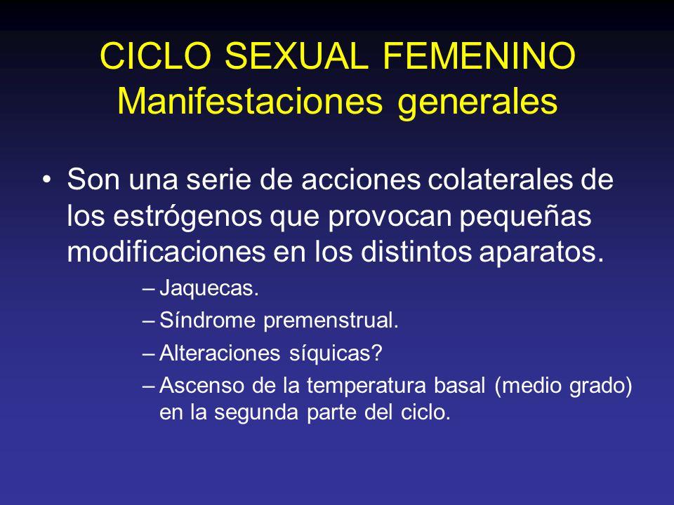CICLO SEXUAL FEMENINO Manifestaciones generales Son una serie de acciones colaterales de los estrógenos que provocan pequeñas modificaciones en los di