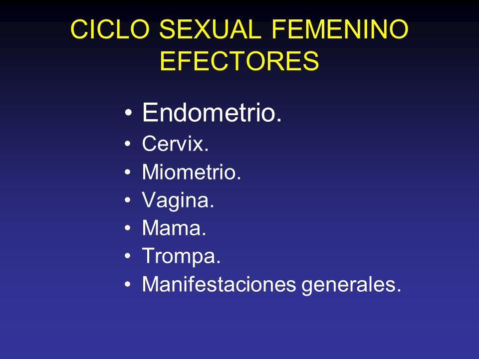CICLO SEXUAL FEMENINO EFECTORES Endometrio. Cervix. Miometrio. Vagina. Mama. Trompa. Manifestaciones generales.