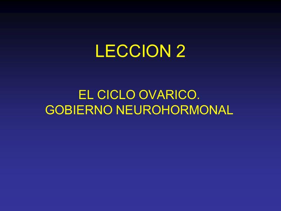 LECCION 2 EL CICLO OVARICO. GOBIERNO NEUROHORMONAL