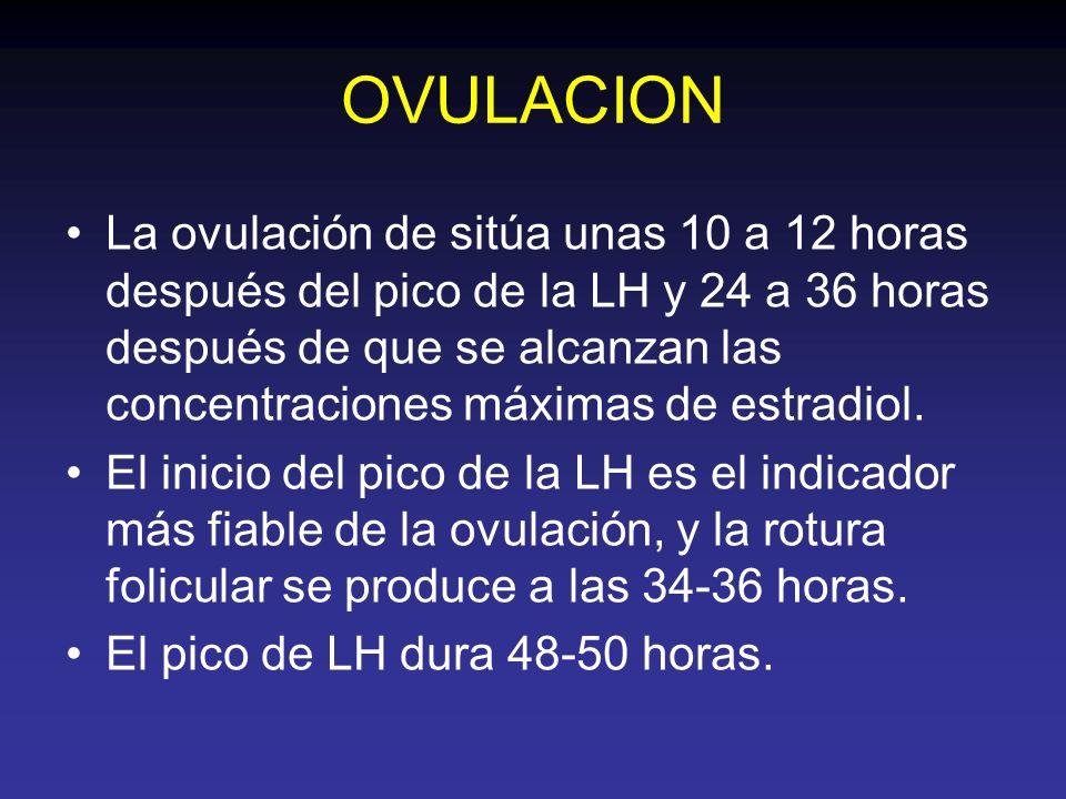 OVULACION La ovulación de sitúa unas 10 a 12 horas después del pico de la LH y 24 a 36 horas después de que se alcanzan las concentraciones máximas de