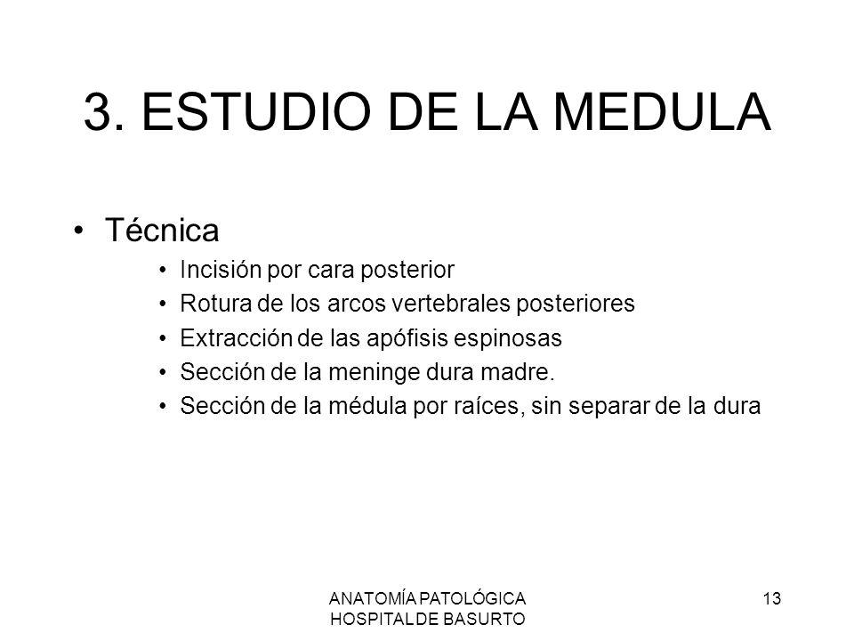 ANATOMÍA PATOLÓGICA HOSPITAL DE BASURTO 13 3. ESTUDIO DE LA MEDULA Técnica Incisión por cara posterior Rotura de los arcos vertebrales posteriores Ext